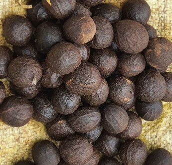 Health Benefits of Nigerian walnuts